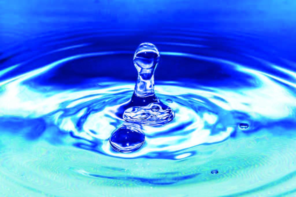Água: o elemento essencial